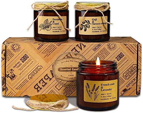 Candele profumate, regali per le donne, set di candele in scatola retrò, birra francese e lavanda, albero di cachi e cocco, 3 confezioni di wolfberry e arancia Tarocco, regalo di San Valentino.