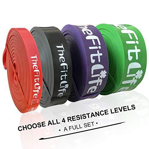 TheFitLife Elastici Fitness Bande di Resistenza - fasce elastiche fitness di assistenza al pullup, palestra in casa lo stretching del corpo,elastico fitness,borsa da trasporto e guida all'allenamento
