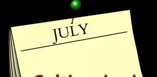 cosa coltivare a luglio