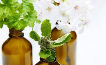 note olfattive oli essenziali ti semplifico la vita